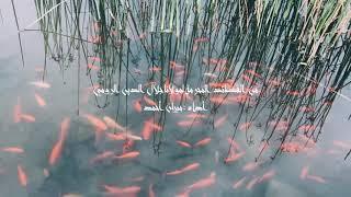 مازيكا من القصائد المحرّمة لمولانا جلال الدين الرومي تحميل MP3