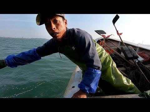 网友给阿雄送来大礼,出海捕鱼运气倍增,轻轻松松搞到大量鱼货