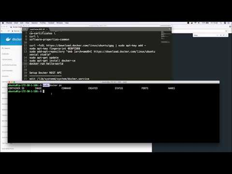 Using The Docker REST API | Docker Remote REST API Mp3