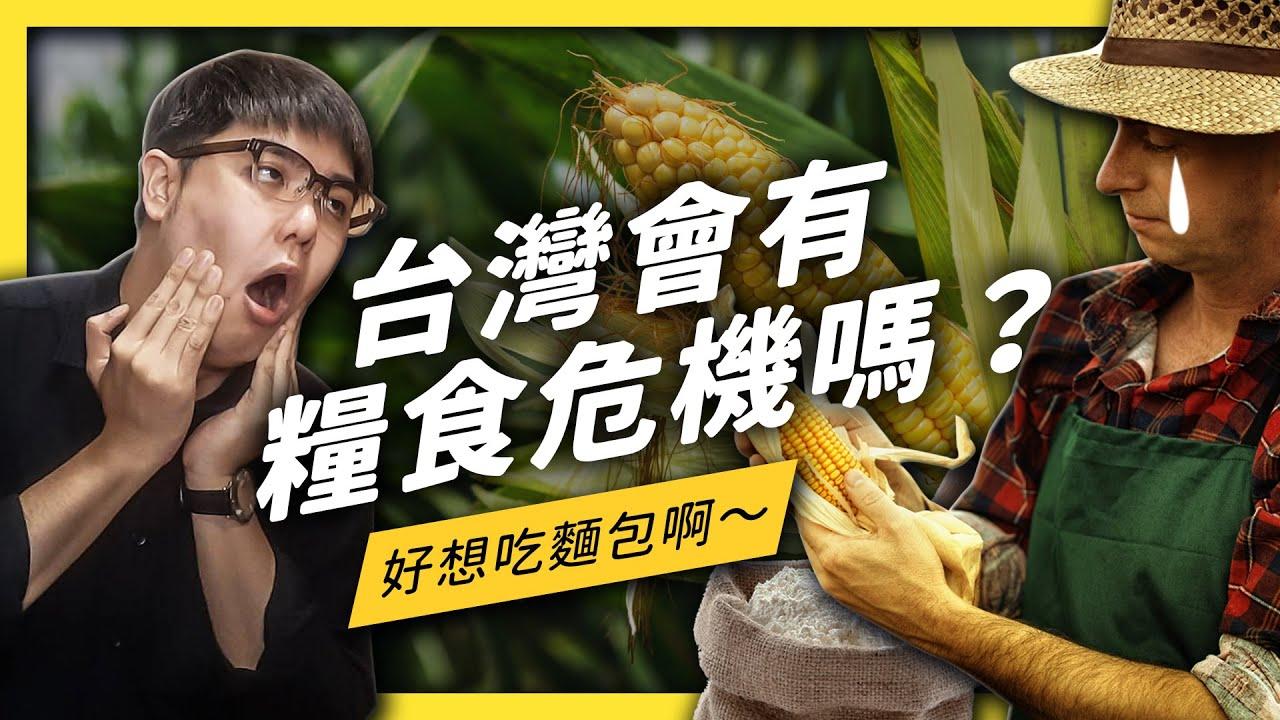 疫情造成各地糧食危機,台灣能順利度過嗎?| 志祺七七