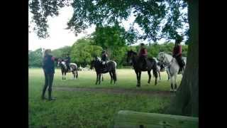 SOH(S) Pony Club Camp 2015