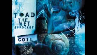 Toad the Wet Sprocket - Little Buddha