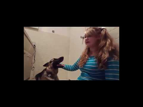 DOG SEX STORY update (Whitney Wisconsin)