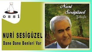 Nuri Sesigüzel / Dane Dane Benleri Var