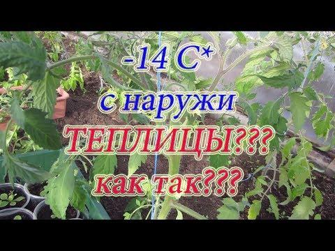 ТЕСТ ОТКЛЮЧЕНИЯ ЭЛЕКТРО КАБЕЛЯ ПОДОГРЕВА ГРУНТА В ПОЛИКАРБОНАТНОЙ ТЕПЛИЦЕ