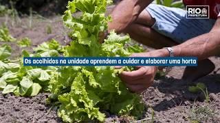 Horta Acolhedora Carioca transforma vidas a partir da jardinagem