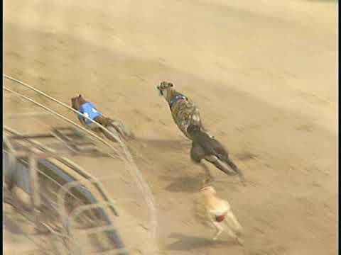 Race 34
