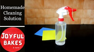 Cleaning solution to kill cockroaches/spiders/ants | Homemade Cleaning Solution