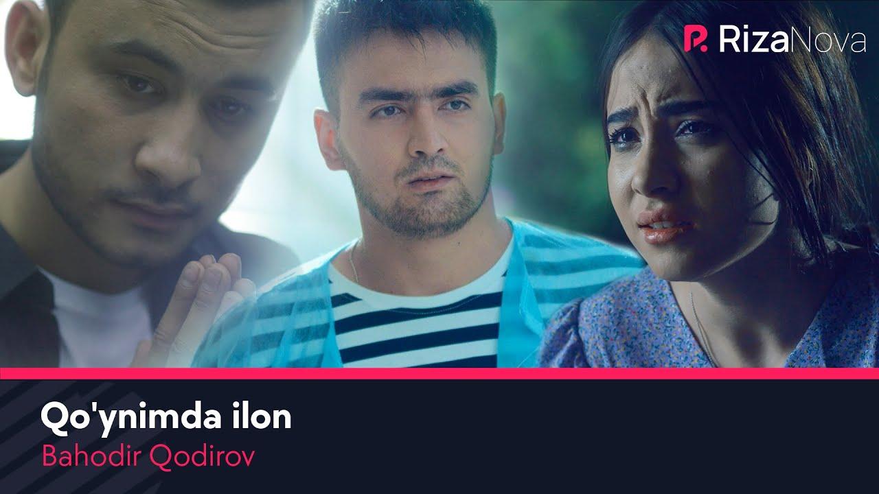 Bahodir Qodirov - Qo'ynimda ilon