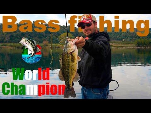 Pesca di seiner