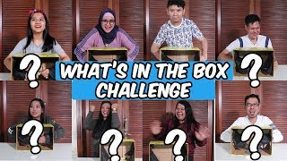 Video What's in the Box Challenge | with DKN 2 Cast MP3, 3GP, MP4, WEBM, AVI, FLV Agustus 2019