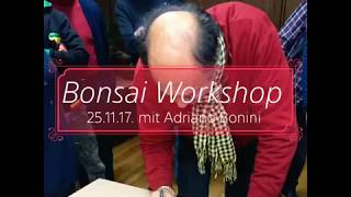 Rückblick 2017 Bonsai-Workshop mit Adriano Bonini