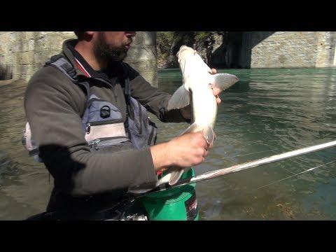 In che limpalcatura è migliore per pescare su una verga