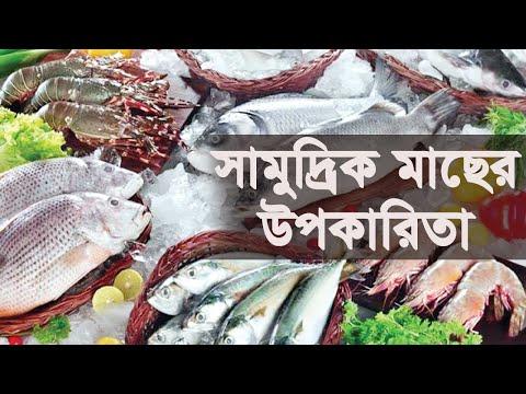 সামুদ্রিক মাছ খাওয়ার উপকারিতা দেখুন। Sea Fish`s Health Benefit
