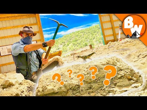 Digging Up Jurassic Treasure!