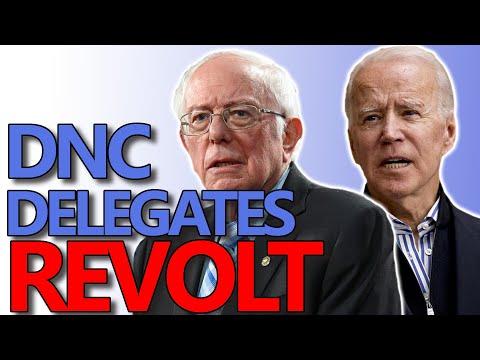 800 Bernie Sanders Delegates Vote NO on Democratic Party Platform