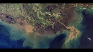 "Breaking ""TOXIC Algae Bloom"" Shutdown Gulf Beaches Mississippi & Louisana"