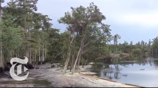 Sinkhole in Louisiana Swallows Trees - Caught on Tape 2013 | The New York Times | Kholo.pk