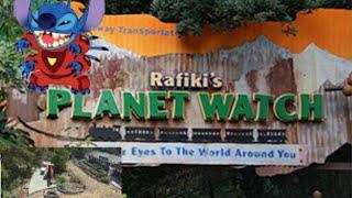 Disney News Update #3: Rafiki Returns, Stitch's Great Escape is Gone, & Matterhorn Footings