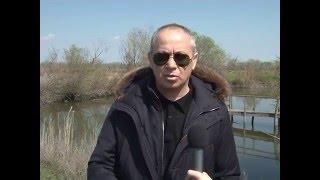 Проблемы и перспективы развития рыбного хозяйства в россии