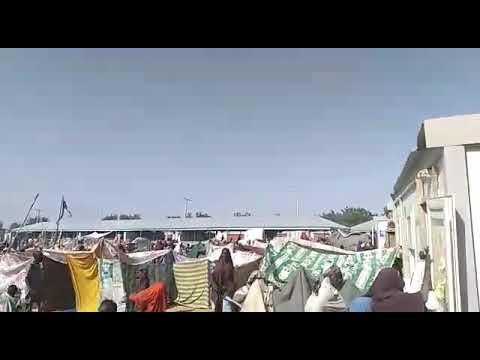 Borno State Today(1)