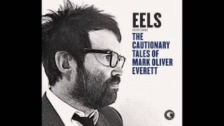EELS - Brave Little Soldier (LIVE WNYC) - (audio stream)