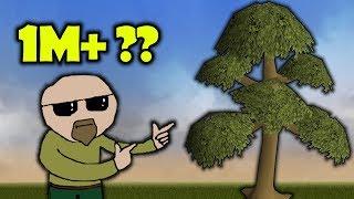 How Much Money Do Yew Bots Make?
