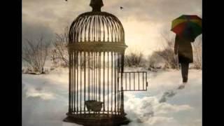 Dan Fogelberg - Empty Cages