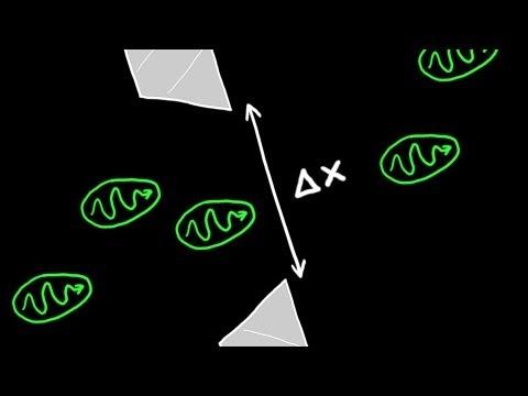 Heisenberg's Uncertainty Principle Explained - YouTube