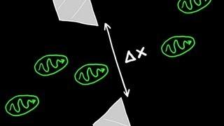 Heisenbergs Uncertainty Principle Explained