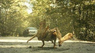 【穷电影】探险家不慎打开神秘洞穴,放出封存百万年的怪物,人类惨遭灭绝