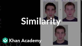 Similarity | Individuals and Society | MCAT | Khan Academy