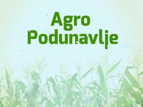 13.  EMISIJA AGRO PODUNAVLJE 08.03.2019.