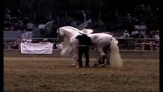 El corrido del caballo blanco Vicente Fernández