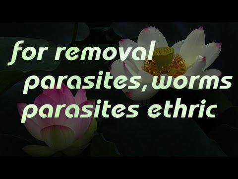 China na paggamot laban sa parasites