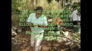 preview picture of video 'CEREMONIA MAYA PIDIENDO LLUVIA.wmv'