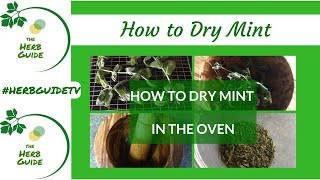 How  To Dry Mint In The Oven - Oven Drying Herbs