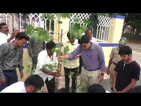 आयुक्त दिवेगावकरांनी केलं पिंपळाचं वृक्षारोपण