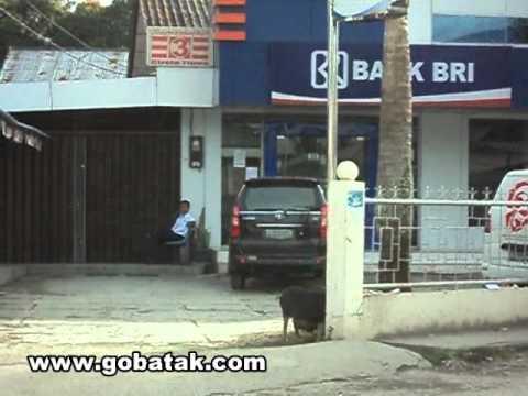 pinahanlobu masuk Bank BRI