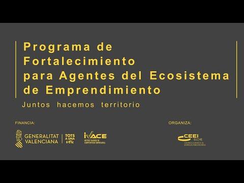 Presentación programa Fortalecimiento Agentes Ecosistema Emprendedor Valenciano 2021[;;;][;;;]