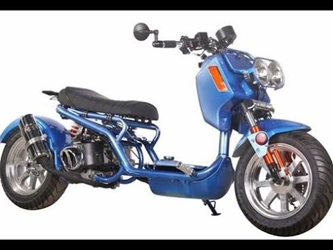 2019 Icebear 150cc Maddog in Jacksonville, Florida - Video 1