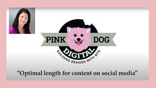 Pink Dog Digital - Video - 2