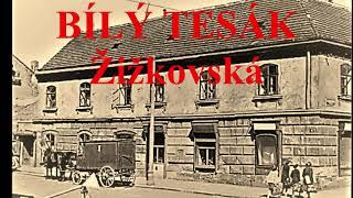 Video BÍLÝ TESÁK - Žižkovská (Official Video)