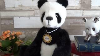 Un panda en Bretagne !