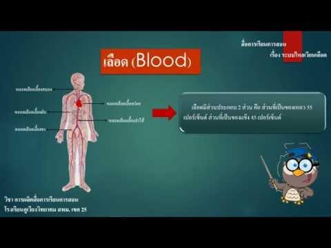 ผลิตภัณฑ์นมสำหรับเส้นเลือดขอด