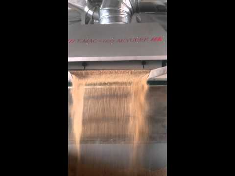 Safflower Seeds Cleaning Plant