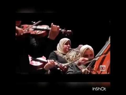 المايسترو / على عثمان