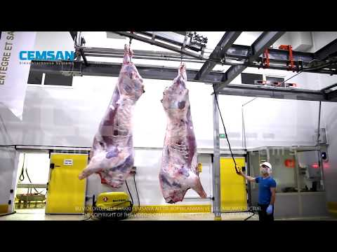 Cattle Slaughtering Plant