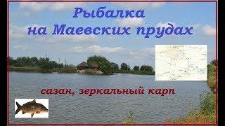 Рыбалка на маевских прудах краснодарского края