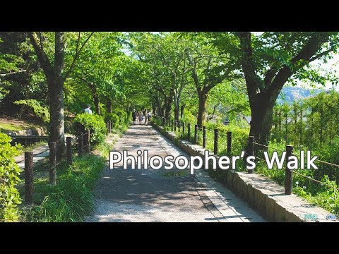 Amazing Walk Through the Philosopher's Path - Kyoto, Japan   Travel Video (4K)